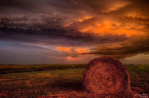 Hay in a field_august_instagram