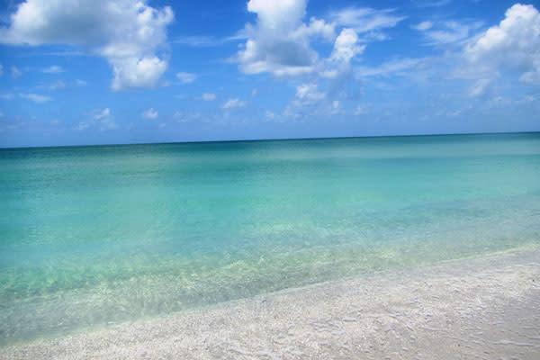 #NoAlgae Don Pedro Island Beach