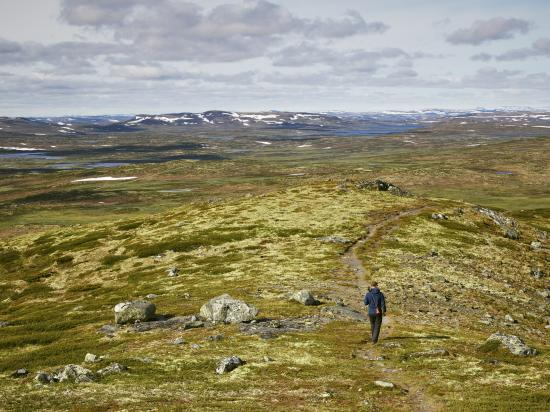 Hiking in Hardangervidda national park