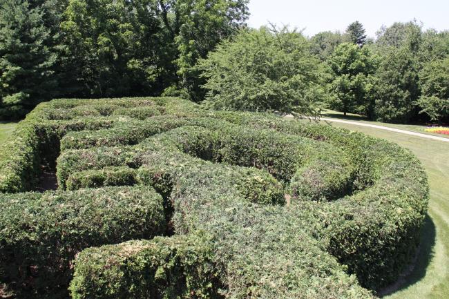 klehm arboretum hedge maze