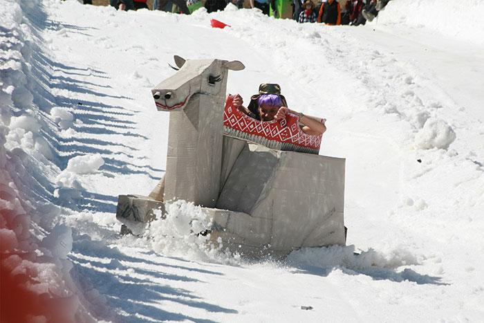 Racing in the Cardboard Box Derby