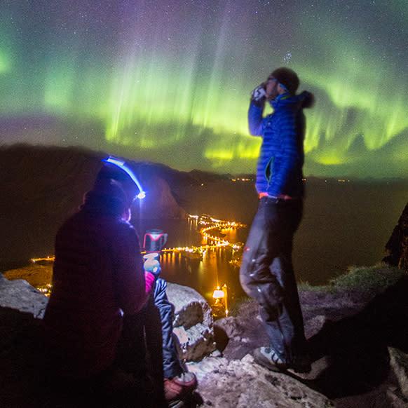 Northern lights from Reinebringen, Lofoten