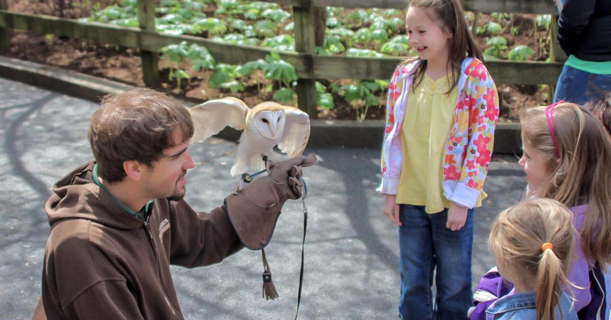 Zoo America Wildlife Park ®