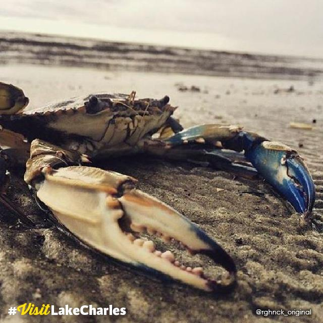 Michael Kasey's image won #VisitLakeCharles Photo of the Month.