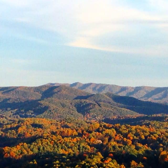 Valhalla Vineyard Color - Fall Photo