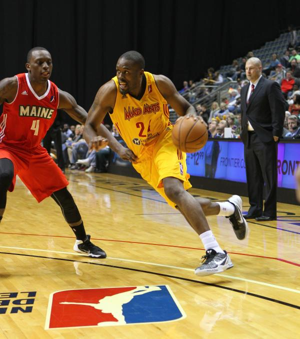 Mad Ants Basketball