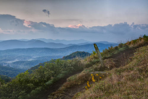 Max Patch Trail - Explore Asheville