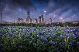 Este Mes en Houston
