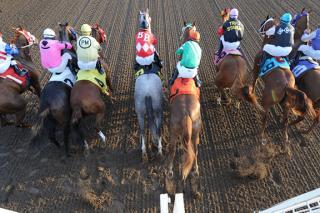 Prairie Meadows - Catch Live Racing
