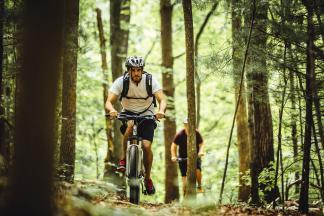 Bike Shops, Rentals & Repairs