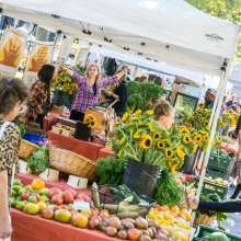 Copley Farmer's Market