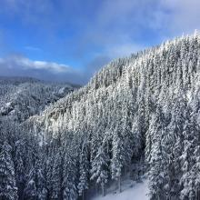 Winter in the Cascades