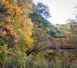 Fall Foliage at McCloud Nature Park in North Salem, IN