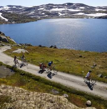 A group biking along a lake at Rallarvegen