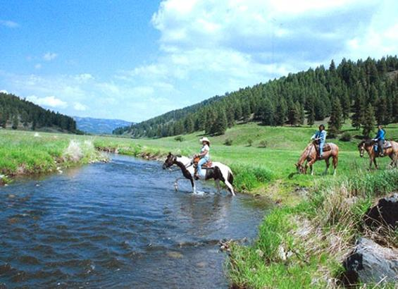 Guest Ranches