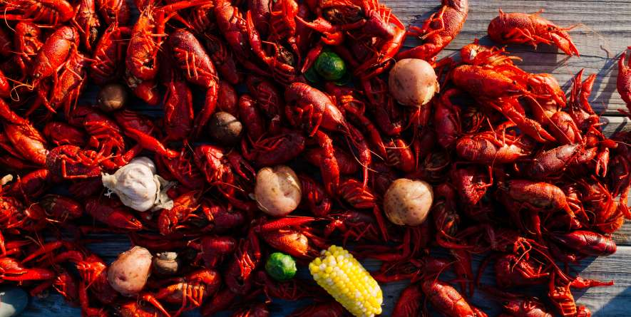 Boiled Crawfish on Table