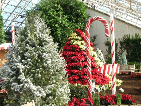 12 Days Of Christmas Exhibit At The Botanical Conservatory