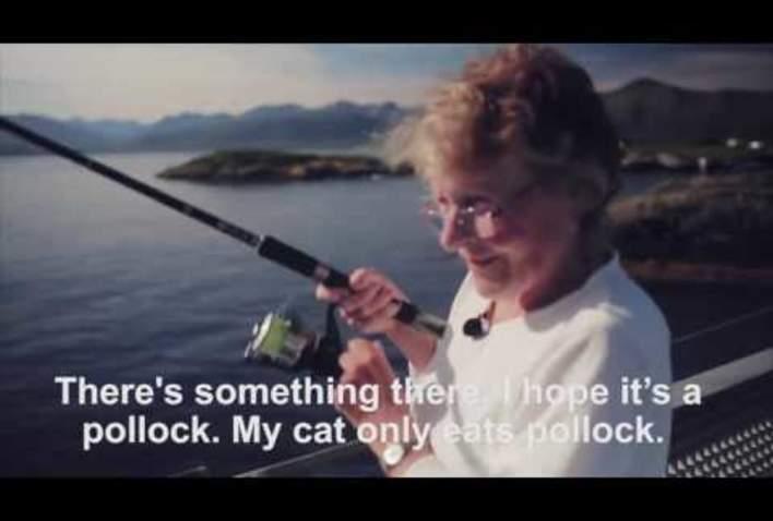 Fiske fra bru på Atlanterhavsveien