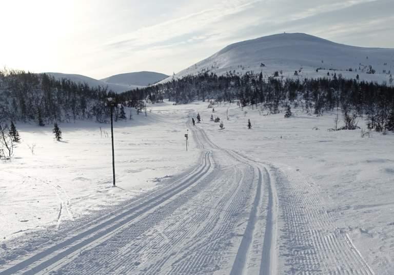 Gulrunden i Trondrudmarka - kåret til Norges beste skiløype