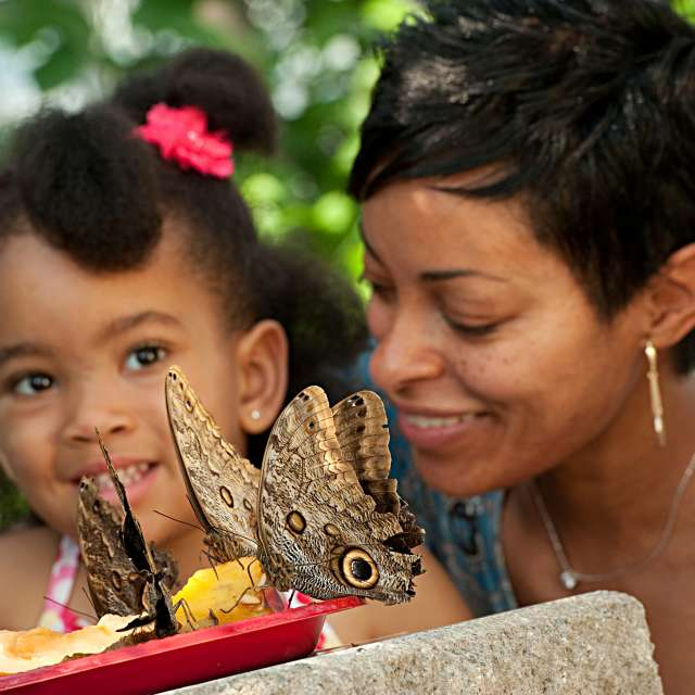 Mom and girl with butterflies eating fruit photo by Stephanie Gross