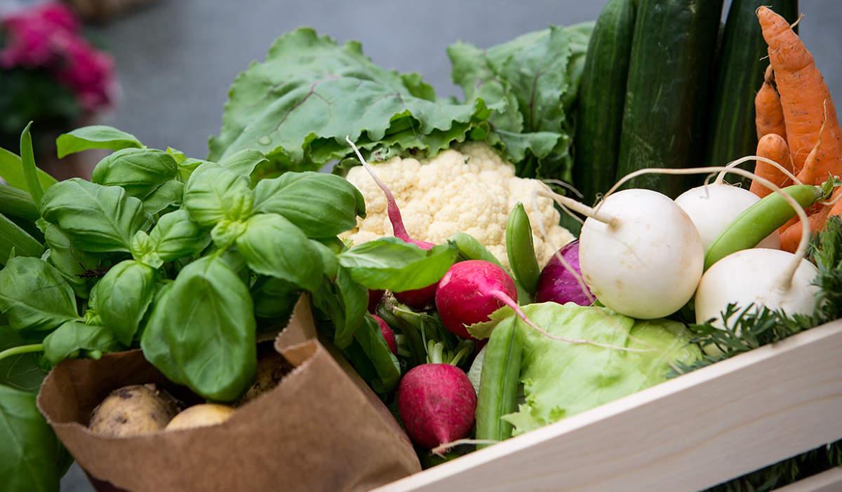 Grønnsaker og urter i trekasse