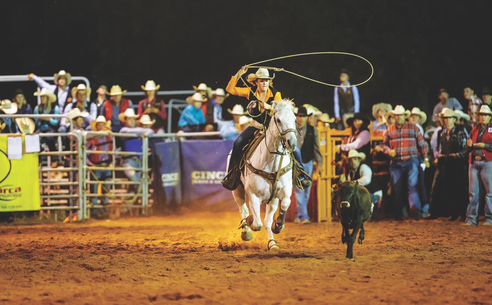 Cowboy Stampede 2016