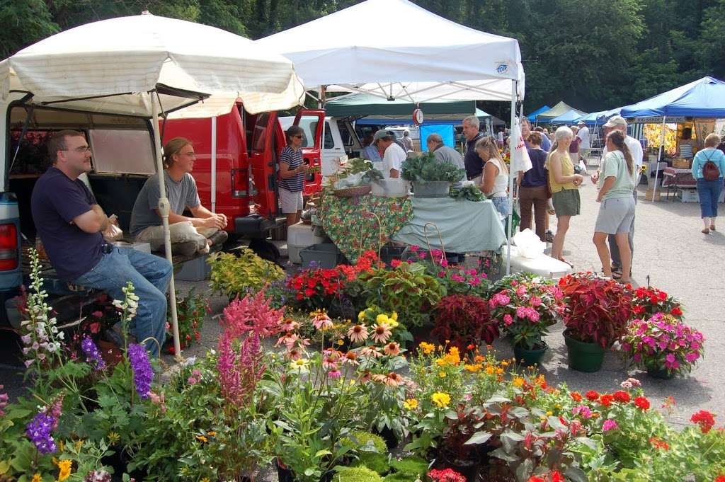 Spring Arrives in Asheville with Tailgate Markets