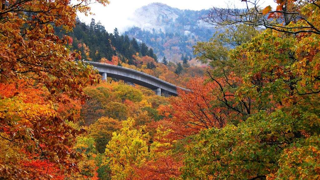 Photo Contest: Fall In Love With Asheville
