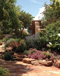 13 Gardens