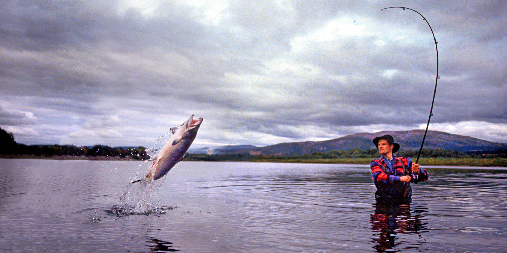 Fishing in tr ndelag official travel guide to norway for Image of fish