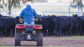 Aussie Helpers provides hope to farming families doing it tough.