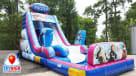 frozen child's birthday party slide