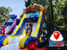 Mickey Wet Water Slide For Rent