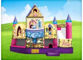 Disney Princess 5in1 w/ (Wet or Dry Slide)