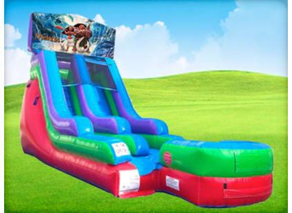15ft Moana Retro Wet/Dry Slide