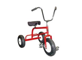 Adult Tricycle Rental
