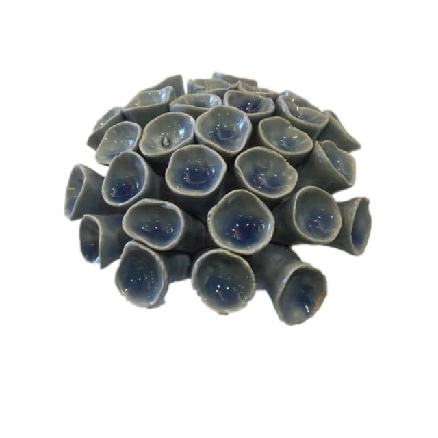 Chive Ceramic Blue Coral