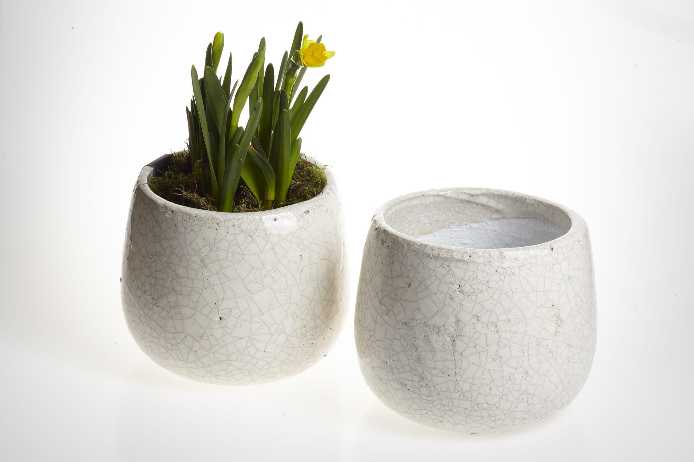 Garden Trading White crackle glaze plant pot