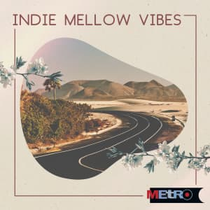 Indie Mellow Vibes