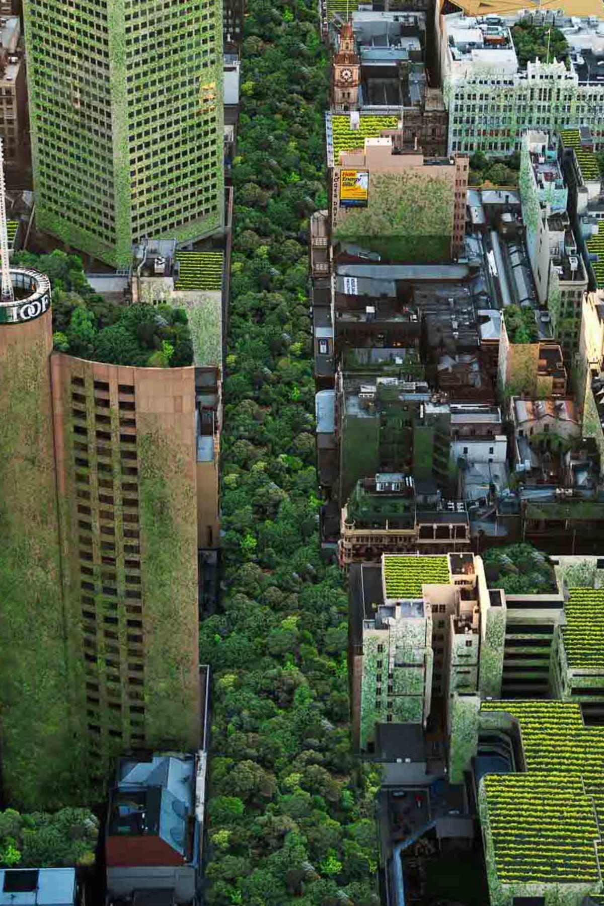 Changing the way we think about ecocities | Pursuit by The University of  Melbourne