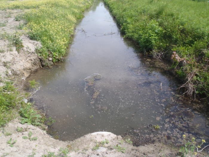Disgruntled hacker Vitek Boden caused sewage spills in Queensland waterways. Image: Waterkeeper Alliance/Flickr