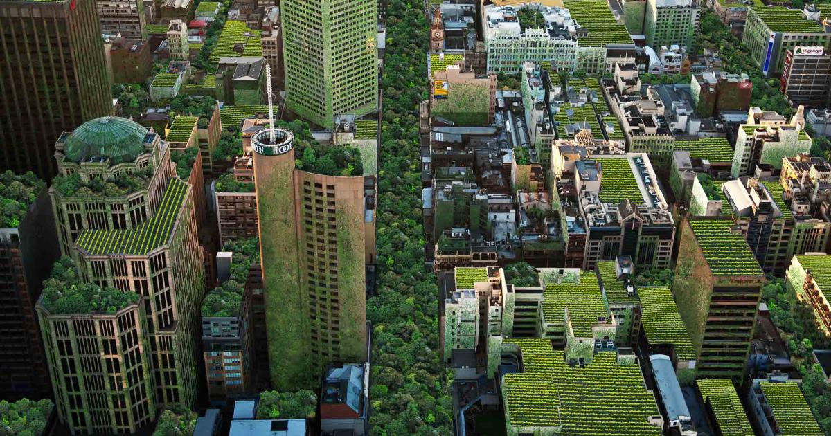One Way Auto >> Changing the way we think about ecocities | Pursuit by The