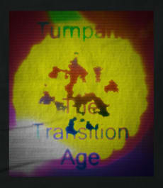 Turnpark