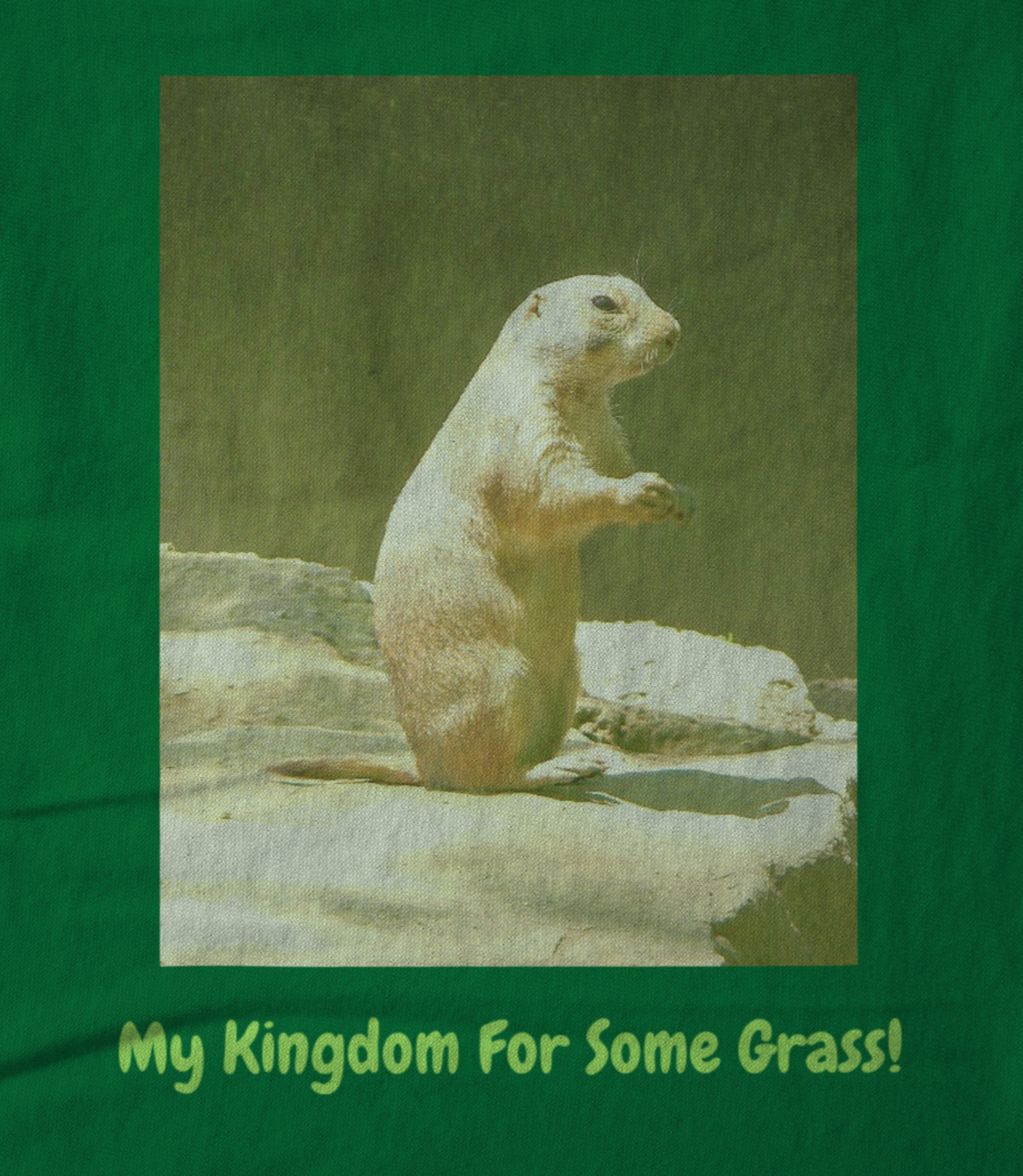 Art whimsically yours studio my kingdom for some grass  1535561311