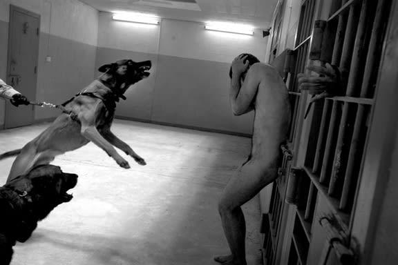 Dogs and Prisoner- Reenactment