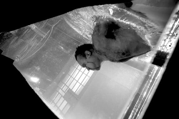 Waterboarding 5- Reenactment