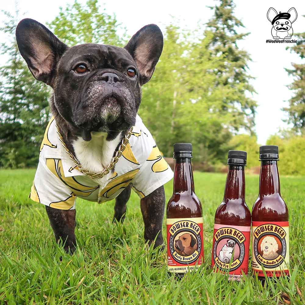 Bowser Dog Beer
