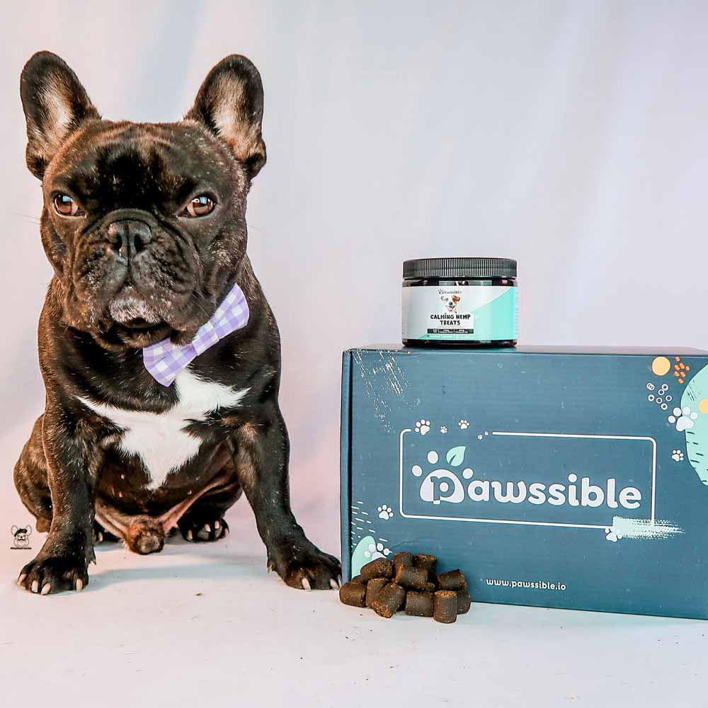 Pawssible Hemp Treats To The Rescue