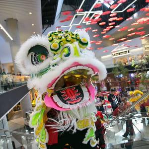 Lunar New Year Community Event