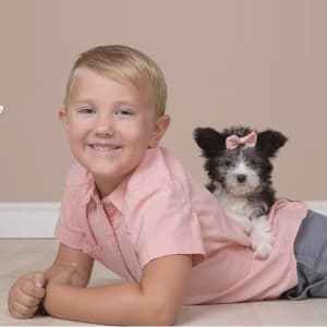 9a74b9e5bfea Pet Photography Event. JCPenney Portrait Studio